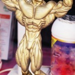 The Science of Hypertrophy – aka Muscle Growth