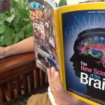 Brain Training And What You Need to Know About the Brain