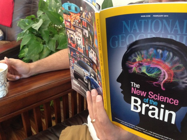 brain training in National Geographic